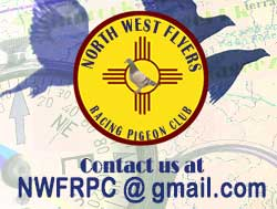 Contact NWFRPC